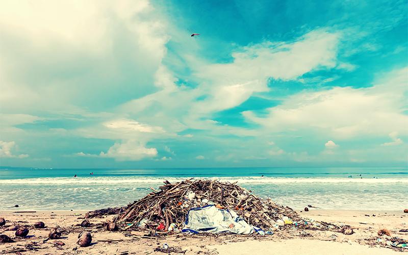 プラスチック問題SDGs