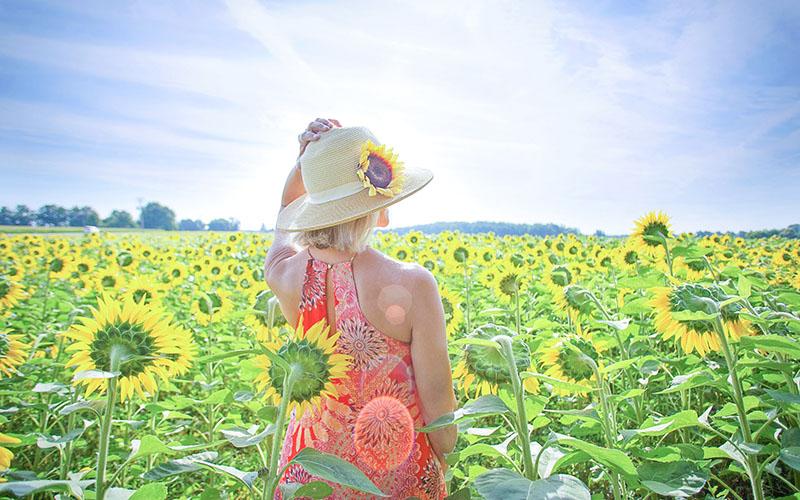 ひまわり畑で太陽の紫外線を浴びる女性